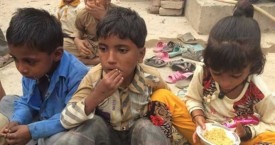 November News Report from Pakistan